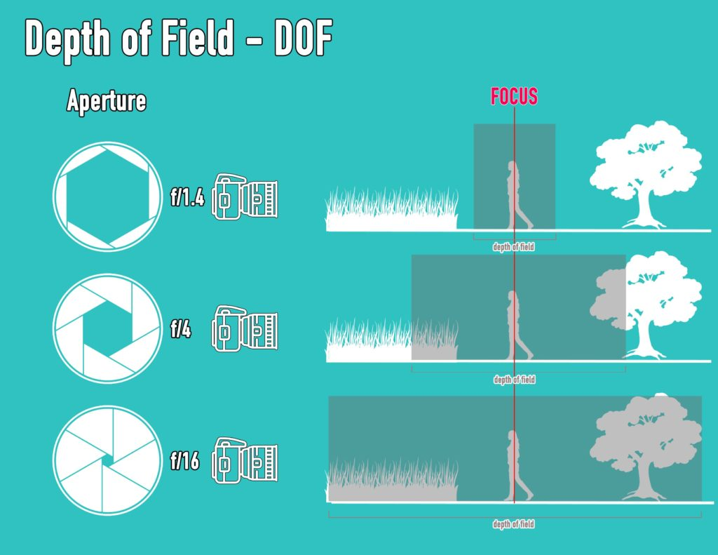 dslr photography for beginners with depth of field illustration