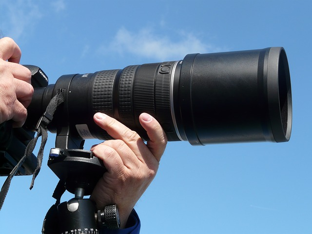 Wildlife Photography Gear For Beginners