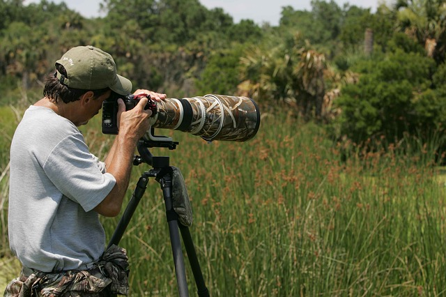 Wildlife Photography Gear To Keep In Mind For Beginners