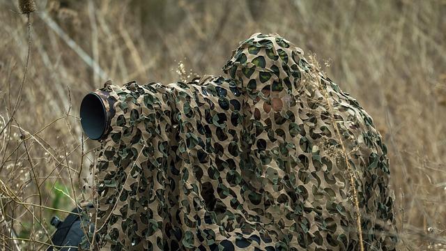 Wildlife Photography Gear