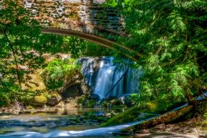 Whatcom Falls, Bellingham, WA